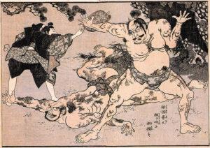 Luta de sumo