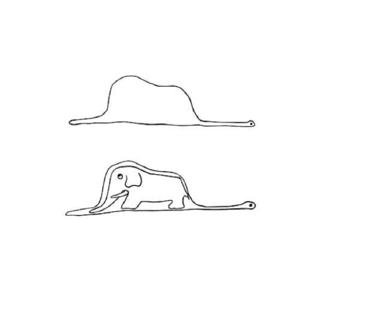 jiboia engole elefante